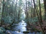003-stover-creek-ga