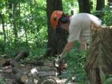 Wilmington Appalachian Trail Club