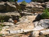 rock scramble