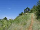 Trail relocation Palmerton, PA.