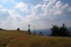 NEPA Ridgerunning Photos 8/12 - 8/26 2011