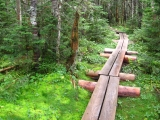 182more-bog-bridges-not-far-from-the-previous