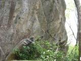 029-gnarly-at-high-rocks-nc