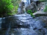 044-snakecharmer-and-gnarly-at-jones-falls-tn