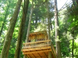 046treehouse-at-kincora