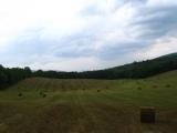 103-more-farmland