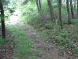 110-the-snake-is-right-on-the-trail