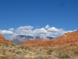 View north toward the Pine Valley Mountains from the Red Cliffs National Recreation Area, UT.