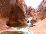 Water Canyon getting narrower, note the hand and foot holds in the rock on the right.