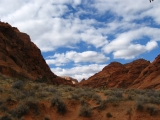 Water Canyon, Red Cliffs National Recreation Area, UT.