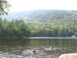 139coldylocks-and-sudoko-swim-at-rock-pond-vt