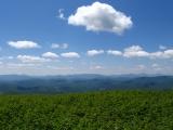 052approaching-the-grayson-highlands-va