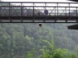 075hong-kong-fuey-jumps-into-the-james-river