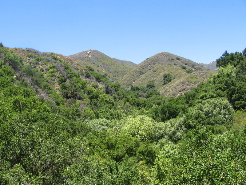 View toward the mountain crest from near the top of Tangerine Falls.