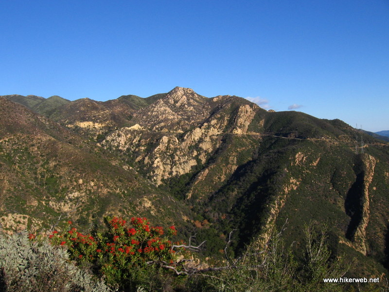 Looking into Rattlesnake Canyon, some Toyon and sage make for nice color in the foreground.