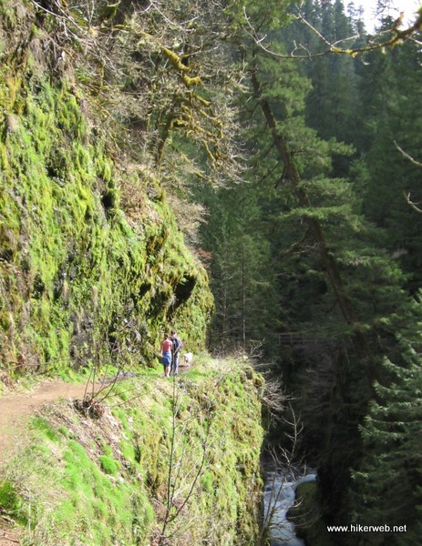 A couple hikers getting ready to cross High Bridge, which crosses 150ft above the creek at a narrow gorge cut. The bridge is visible in the background.