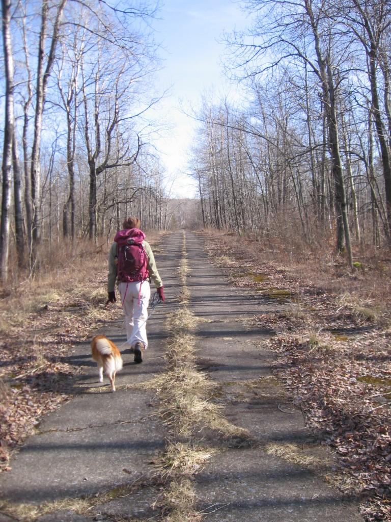Hiking companions